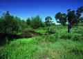 NRCSCO01020 - Colorado (1431)(NRCS Photo Gallery).tif