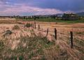 NRCSCO02007 - Colorado (1589)(NRCS Photo Gallery).jpg