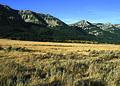 NRCSMT01033 - Montana (4915)(NRCS Photo Gallery).jpg