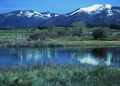 NRCSMT01072 - Montana (4991)(NRCS Photo Gallery).tif