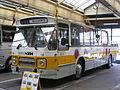 NZH-museumbus06.JPG