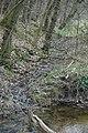Nabij Kasteel Staverden - panoramio - Rokus C.jpg