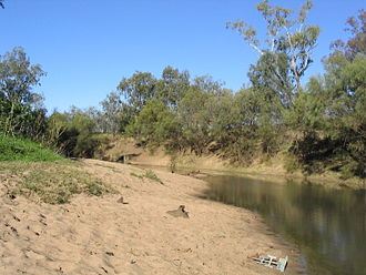 Bank (geography) - A sloping sandy point bar (close side) and the vegetation-stabilized cut bank (far side) on the Namoi River, New South Wales, Australia. These two constitute the banks of the river.