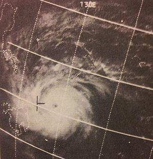 1970 Pacific typhoon season - Image: Nancy Feb 2419700501z ESSA9