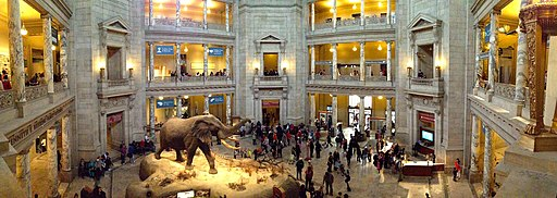 National Museum of Natural History Rotunda pano