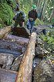 National Public Lands Day 2014 at Mount Rainier National Park (053), Narada.jpg