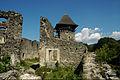Nevitske Castle 2011 1.jpg