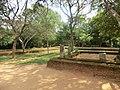 New Town, Polonnaruwa, Sri Lanka - panoramio (17).jpg