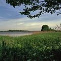 Nieuwe Merwede in de Biesbosch - Unknown - 20381476 - RCE.jpg