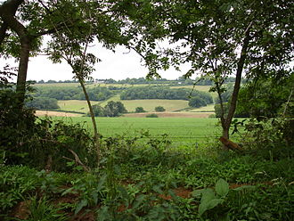 Hog's Back - Image: North downs way seen from puttenham
