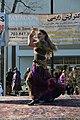 Nowruz Festival DC 2017 (32946751083).jpg