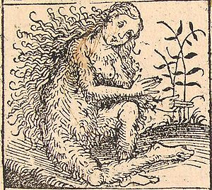 Nuremberg chronicles - Strange People - Hairy Lady (XIIv).jpg