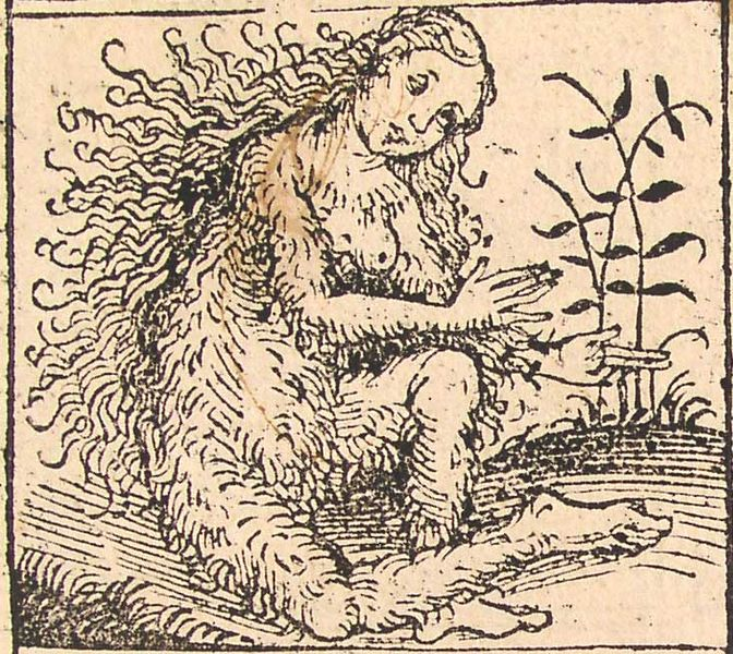File:Nuremberg chronicles - Strange People - Hairy Lady (XIIv).jpg