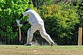 Nuthurst CC v. Henfield CC at Mannings Heath, West Sussex, England 055.jpg