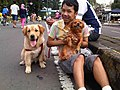 Ohh my dog!!.jpg