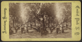On the Mall, from Robert N. Dennis collection of stereoscopic views 3.png