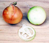 لبعض الاعشاب الطبية وفوائدها 200px-Onion.jpg