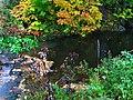 Orford brook - panoramio.jpg