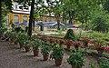 Orto Botanico Florence - panoramio (1).jpg