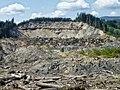 Oso, WA Landslide - panoramio.jpg