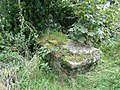 Overgrown gravestone - geograph.org.uk - 628696.jpg