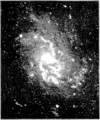 PSM V58 D029 Spiral nebula m 33 by the lick observatory 1900.png