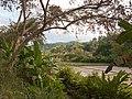 Palawan, Philippines, Wetlands 2.jpg