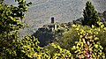 Parco fluviale del Nera - Umbriano 3.jpg
