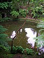 Park lake view in Furnes - panoramio.jpg