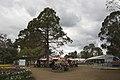Parkes ACT 2600, Australia - panoramio (76).jpg