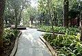 Parque Florencio Antillón, Guanajuato Capital, Guanajuato - Senderos.jpg