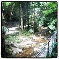 Parque Los Chorros.jpg