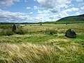 Part of Mitchell's Fold, stone circle - geograph.org.uk - 1564767.jpg