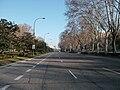 Paseo del Prado (Madrid) 06.jpg