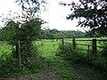 Pasture near Lodge Farm - geograph.org.uk - 539750.jpg