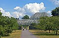 Path to rear of Palm House, Kew Gardens.jpg