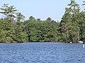 Pawtuckaway Lake.JPG