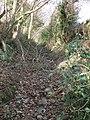 Pennant Walk, near Holywell - geograph.org.uk - 668242.jpg
