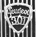 Peugeot 301 (logo) - Muzeum w Nieborowie.jpg