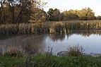 Pickerington Ponds-Ellis Pond in Fall 1.jpg