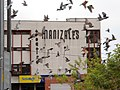 Pigeons Flying over Manizale's Theater - panoramio.jpg