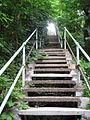 Pittsburgh Steps (2611178663).jpg