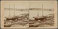 Point shore, by W. C. Thompson.jpg
