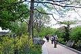 Pollinator Garden in April (16992496954).jpg