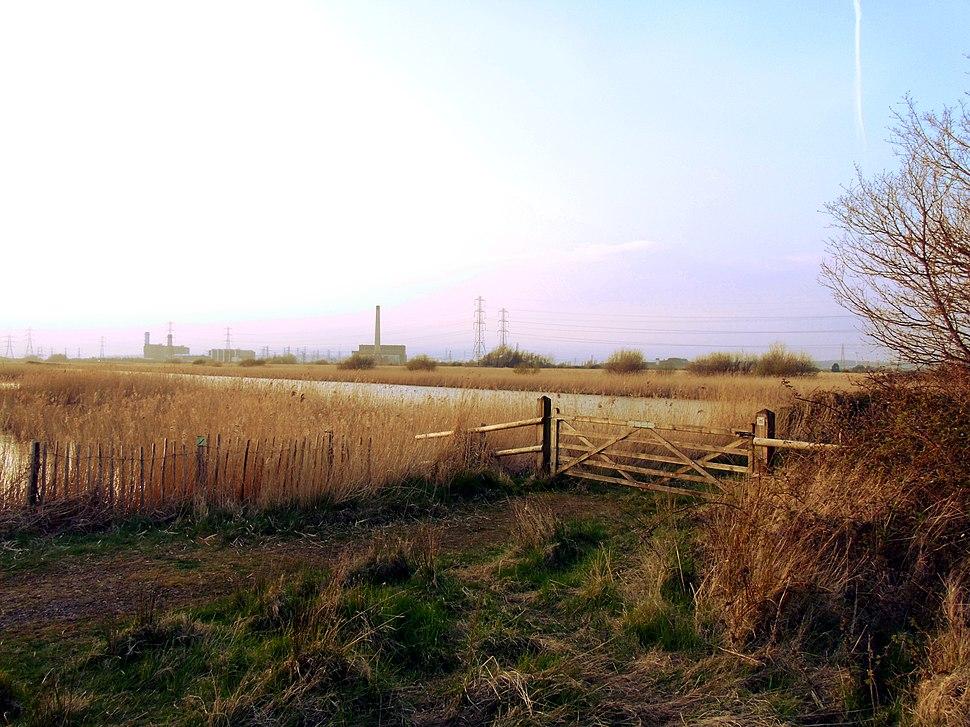 Pond Overlooked By Newport Wetlands RSPB Reserve Bird Hide