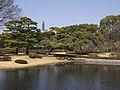 Pond at Higashi-Gyōen.jpg
