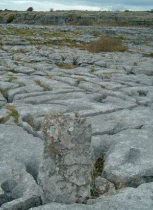 Poulnabrone Lime stone pavement.jpg