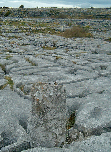 Image:Poulnabrone Lime stone pavement.jpg