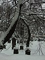 Praha, Smíchov, Bertramka, hřbitov pod sněhem II.JPG