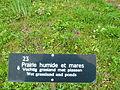 Prairie humide Bailleul jardin botanique.jpg